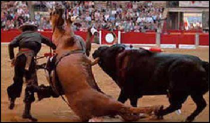 Le cheval sert de bouclier au picador