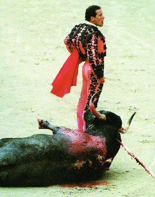 Verguenza !! La honte La corrida, ni un art ni une culture, mais la mort d'une victime désignée.